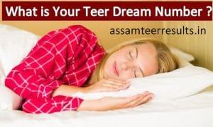 Teer Dream Numbers